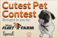 Fleet Farm Cutest Pet Contest